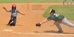 Summer Baseball Camps Virginia